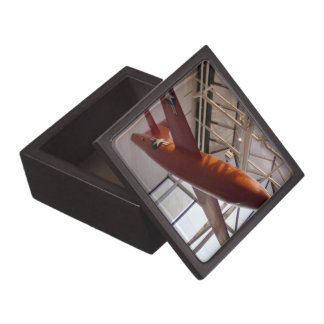 Red rocket airforce plane in show premium gift box