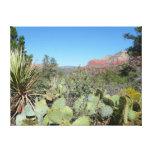 Red Rocks and Cacti I in Sedona Arizona Canvas Print