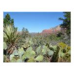 Red Rocks and Cacti I in Sedona Arizona Photo Print