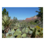Red Rocks and Cacti I in Sedona Arizona Poster