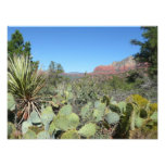 Red Rocks and Cacti I Photo Print