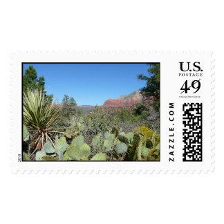 Red Rocks and Cacti I Sedona Arizona Travel Photo Stamps