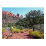 Red Rocks and Cacti II in Sedona Arizona Poster