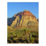 red, rocks, las, vegas, nature, landscape,