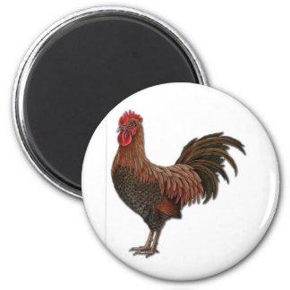 Red Rooster Fridge Magnet