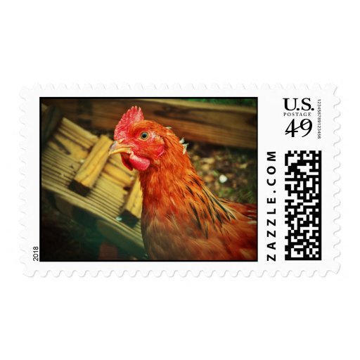 Red rooster postage