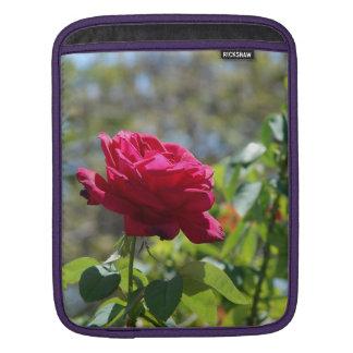 RED ROSE 1 iPad SLEEVE