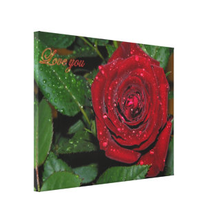 Red Rose #2 Canvas Print
