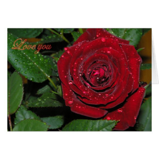 Red Rose #2 Card