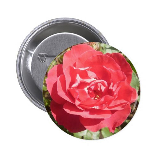 Red Rose 2 Inch Round Button