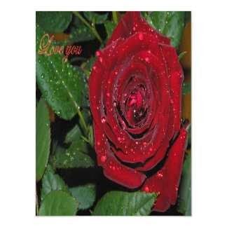 Red Rose #2 Magnetic Invitations