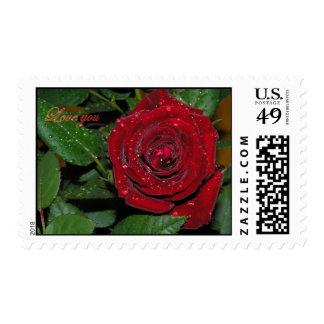 Red Rose #2 Postage Stamp