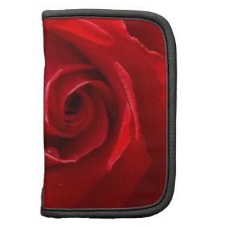 Red-Rose-3.jpg Organizadores