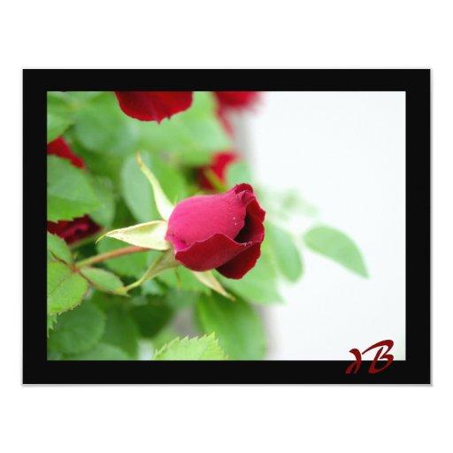 "Red Rose 4.25"" X 5.5"" Invitation Card"