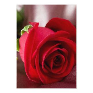 "red rose  5"" x 7"" Basic card"