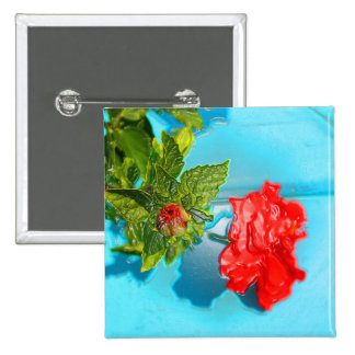 red rose against blue plastic wrap style buttons