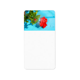 red rose against blue plastic wrap style address label