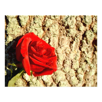 Red Rose against oak tree bark image Personalized Flyer