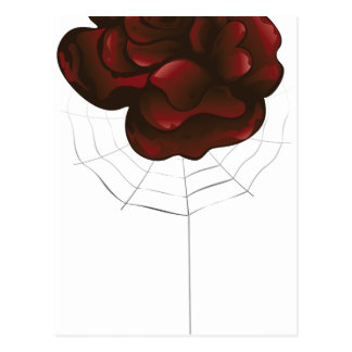 Red Rose and Spider Postcard