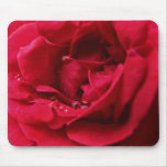 Red Rose and Water Drops Mousepad
