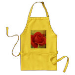 Red Rose Apron