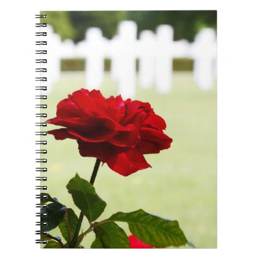 Red Rose at Cemetery Spiral Note Book