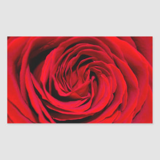 Red Rose Background Rectangle Stickers