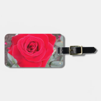 Red Rose Bag Tag