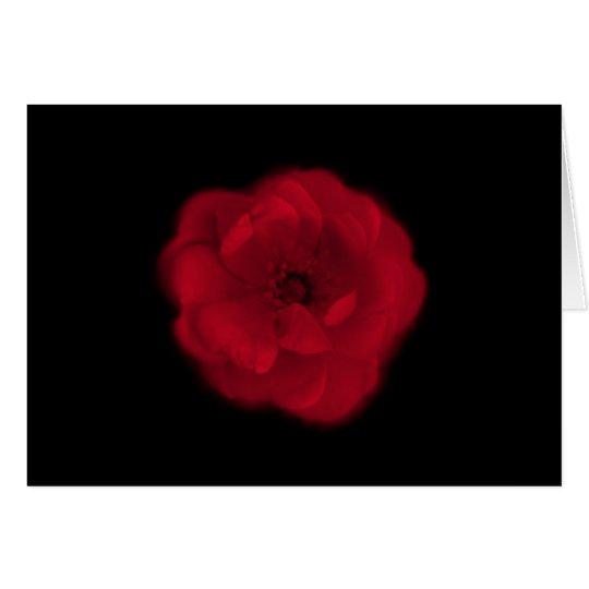 Red Rose. Black Background. Card