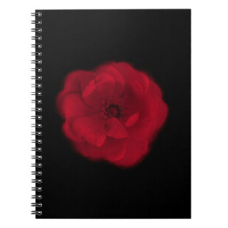 Red Rose. Black Background. Note Book