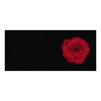 Red Rose. Black Background. Rack Card