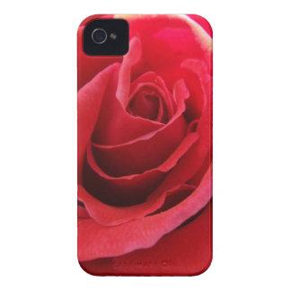 Red Rose Blackberry Bold Case