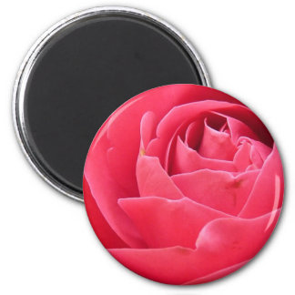 Red Rose Bloom Magnet