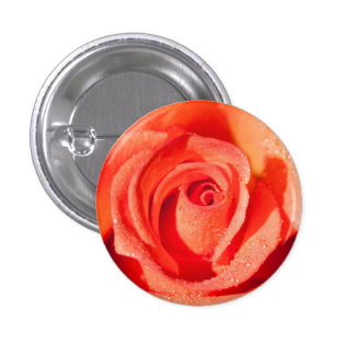 Red rose blossom 1 inch round button