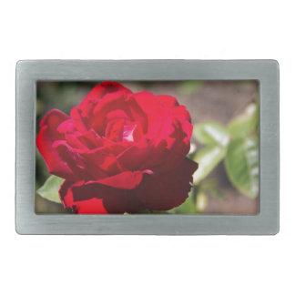 Red Rose Blossom Belt Buckle