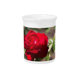 Red Rose Blossom Beverage Pitcher