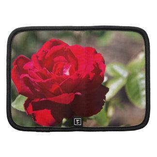 Red Rose Blossom Planner