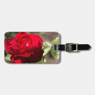 Red Rose Blossom Travel Bag Tag