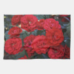Red Rose Blossoms - flower photography Hand Towels