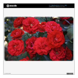 Red Rose Blossoms - flower photography MacBook Air Skin