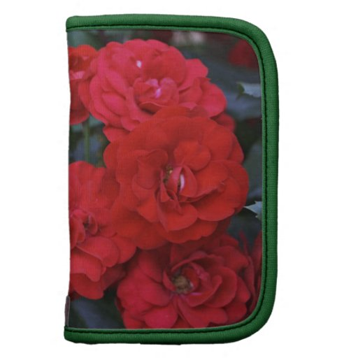 Red Rose Blossoms - flower photography Organizer