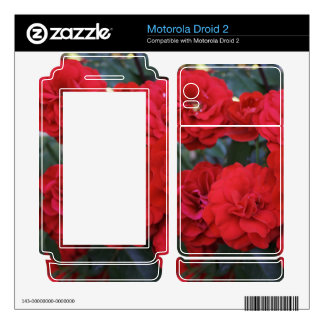 Red Rose Blossoms - flower photography Motorola Droid 2 Decal
