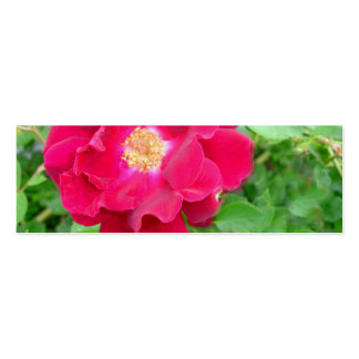 Red Rose Bookmark Business Card Template