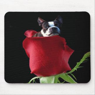 Red rose boston terrier mousepad