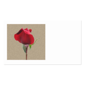 Red rose bud business cards