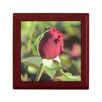 Red Rose Bud Gift Box
