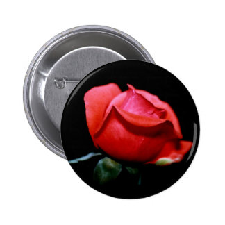 Red Rose Bud Isolated on Black Background 2 Inch Round Button