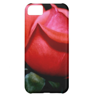 Red Rose Bud Isolated on Black Background iPhone 5C Cover