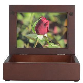 Red Rose Bud Memory Box
