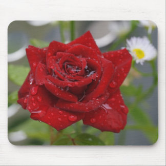 Red Rose Bud Mouse Pad